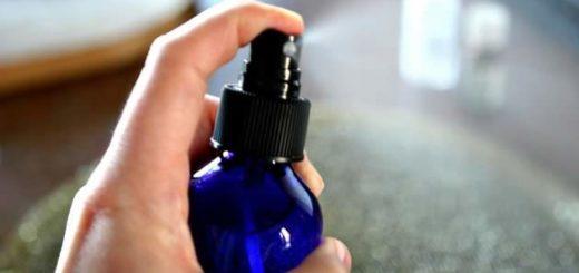 Ambientadores: prefira soluções caseiras para purificar o ar
